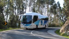 Oeste divide financiamento dos passes interregionais com regiões fronteiriças de Leiria, Lezíria e Médio Tejo