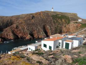 EDP investe 350 mil euros em energia renovável com painéis fotovoltaicos na ilha da Berlenga