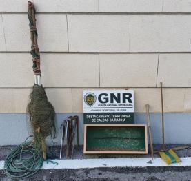 GNR apreendeu em Ferrel material usado na captura ilegal de aves
