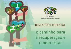 ICNF oferece árvores aos cidadãos para assinalar Dia Internacional das Florestas