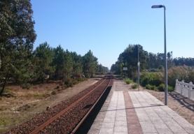 Parlamento discute este mês petição popular sobre a modernização da Linha do Oeste
