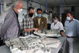 Lourinhã vai colaborar com a oferta de espólio para a reabertura do Museu Nacional do Rio de Janeiro