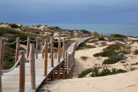 Município de Peniche inicia construção de passadiços dunares em três praias do norte do concelho