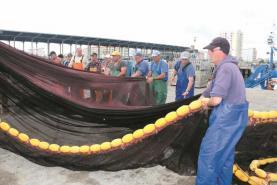 Pescadores do cerco alertam para prejuízos provocados por atuns cuja captura está proibida