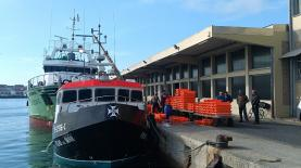 Peniche: Docapesca iniciou reabilitação do cais de descarga do Porto de Pesca