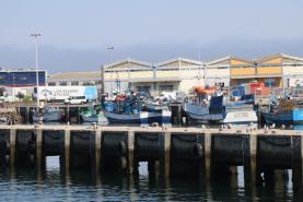 Covid-19: Abertura de candidaturas para apoio à paragem temporária na pesca