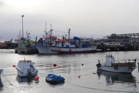 Covid-19: Aberto novo período de candidaturas a apoios à paragem temporária na pesca