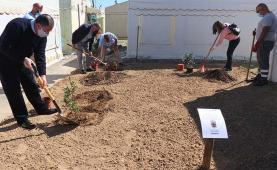 Município da Lourinhã assinalou Dia Mundial da Árvore com a plantação de árvores