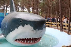 Dino Parque da Lourinhã inaugurou novo trilho dedicado aos Monstros Marinhos