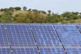 Abertas candidaturas para apoios à aquisição de painéis solares na agricultura