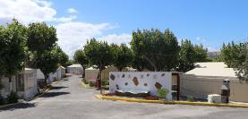 Parque de Campismo Municipal reabriu ao público esta segunda-feira