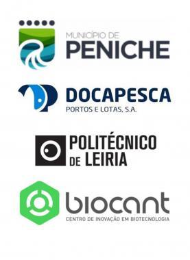 'SmartOCEAN' vai nascer no Porto de Peniche para receber o Parque de Ciência e Tecnologia do Mar